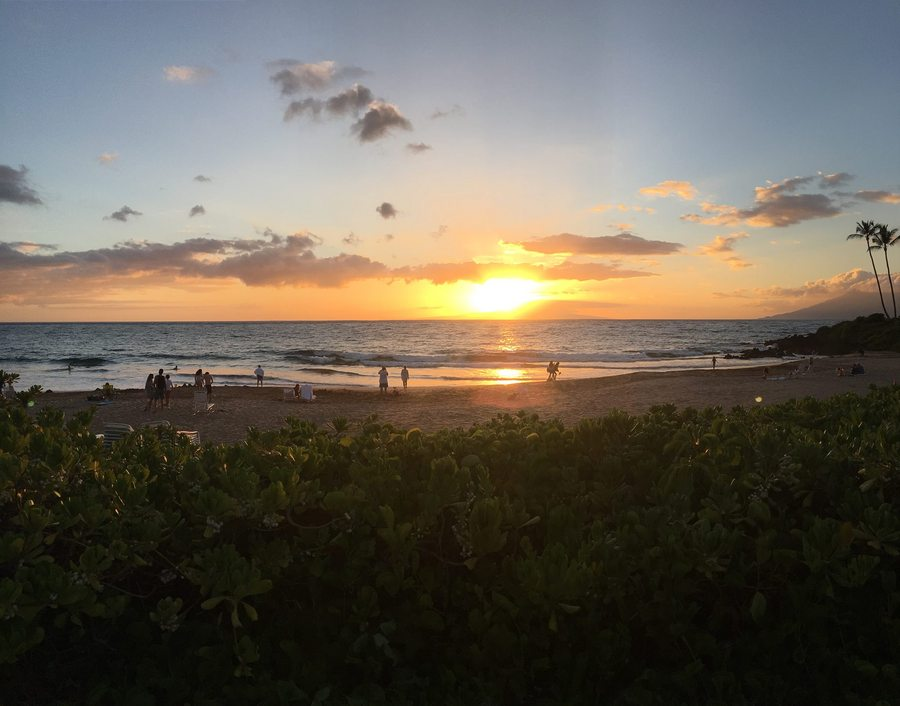 Mauis2